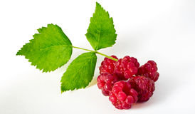 Raspberries. Some raspberries with green leafes Royalty Free Stock Image