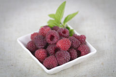 Raspberries. Some raspberries in white cup with mint Royalty Free Stock Photography