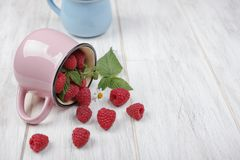 Raspberries and the pink mug. Raspberries spilled out of the pink mug Stock Photos
