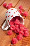 Raspberries spilling from a cup Stock Photography