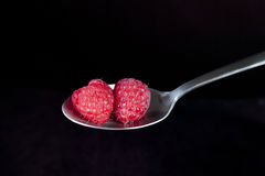 Raspberries on Spoon. Fresh raspberries on spoon with black background Royalty Free Stock Photo