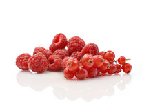 Raspberries Square Crop II. Studio macro of raspberries and redcurrants on a reflective surface against a white background stock photo