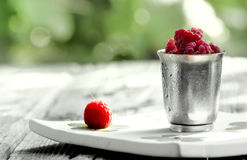 Raspberries in steel cup and on white plate. Isolated on vintage wood background Royalty Free Stock Image