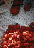 Raspberries and strawberries on newspaper. Food, gastronomy, cooking,cookery Royalty Free Stock Image