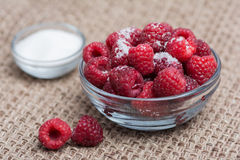 Raspberries and sugar Stock Photos