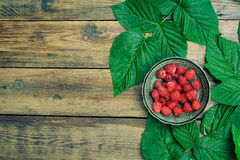 Raspberries summer berry leaf Royalty Free Stock Photo
