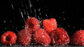 Raspberries in super slow motion being soaked stock footage