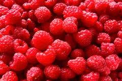 Raspberries. Sweet juicy raspberries ready to eat it Royalty Free Stock Photos