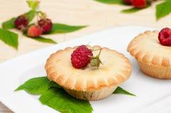 Raspberries tart Stock Photos