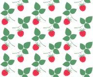 raspberries Teste padrão Imagem de Stock Royalty Free