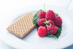 Raspberries with wafer. A plate with raspberries and a waffle Stock Images
