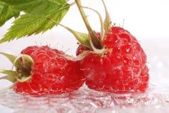 Raspberries. in a water Stock Photo