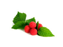 Raspberries on white Stock Image