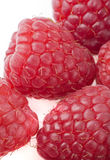 Raspberries on a white background Royalty Free Stock Images