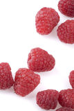 Raspberries on a white background Royalty Free Stock Photo