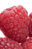 Raspberries on a white background Stock Photo
