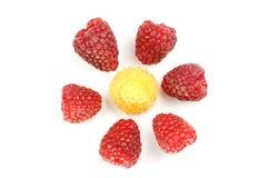 Raspberries on the white background. Raspberries in macro on the white background Royalty Free Stock Photos