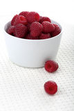 Raspberries in white bowl - close-up Royalty Free Stock Photos