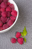 Raspberries in a white bowl Stock Images
