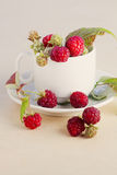 Raspberries in a white cup. Fresh raspberries with leaves in a white cup Royalty Free Stock Photos