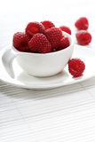 Raspberries in white cup - studio shot Stock Image