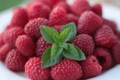 Raspberries. On white plate decorated with mint leaves, close-up Royalty Free Stock Photography