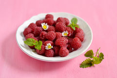 Raspberries in a white plate with mint. On pink background royalty free stock photography
