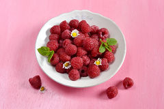 Raspberries in a white plate with mint. On pink background stock photos