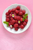 Raspberries in a white plate with mint. On pink background. Copyspace above royalty free stock photography