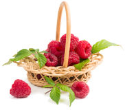Raspberries in the wicker basket. Fresh red raspberries with leaves in the basket on white background Royalty Free Stock Photo