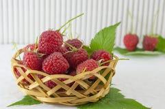 Raspberries in wooden basket. Fresh raspberries in wooden basket on white background Royalty Free Stock Photos