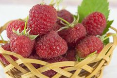Raspberries in wooden basket. Fresh raspberries in wooden basket on white background Royalty Free Stock Photography