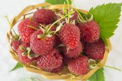Raspberries in wooden basket. Fresh raspberries in wooden basket on white background Stock Photos