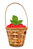 Raspberries in wooden basket. Isolated on white background Royalty Free Stock Photography