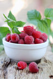 Raspberries on a wooden board. Fresh juicy raspberries from the garden in a bowl Stock Photography