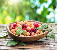 Raspberries in the wooden bowl. Raspberries in the wooden bowl on the table Stock Photo