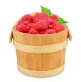 Raspberries. In a wooden bucket isolated on white Royalty Free Stock Photos