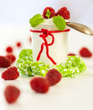Raspberries and yoghurt or clotted cream Royalty Free Stock Image