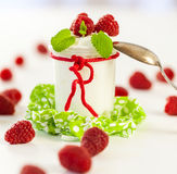 Raspberries and yoghurt or clotted cream Stock Photography