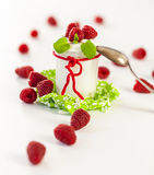 Raspberries and yoghurt or clotted cream Royalty Free Stock Images