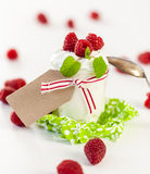 Raspberries and yoghurt or clotted cream Stock Images
