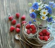 Raspberries and yogurt Stock Photos