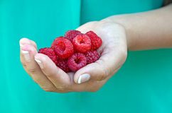 Raspberries in young girl's hand Stock Images
