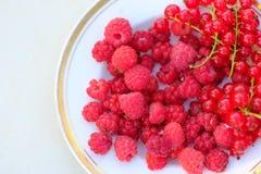Raspberriy et curant rouge, vitamines d'été Images stock