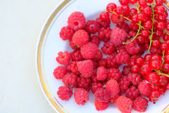 Raspberry and red curant, summer vitamins. Quite close up picture of different summer berries lying on a casual ceramic plate with golden edge. You may see some Stock Images