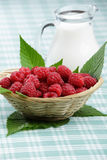 Raspberry. In small basket and jug with milk Stock Images