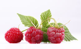 Raspberry. The raspberry with green sheet is isolated on the white Stock Images