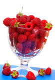 Raspberry Stock Image