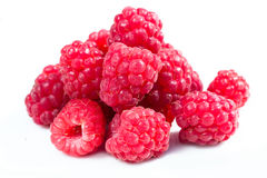 Free Raspberry Stock Photography - 11677762