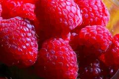 Raspberry. Raspberries are a nice healthy desert stock photos